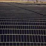 Fotovoltaico: obiettivo 1.000 Megawatt