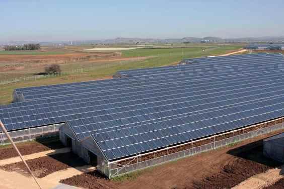 In sardegna la serra fotovoltaica pi grande del mondo for Serra agricola usata