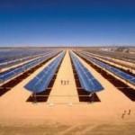 Il Progetto Desert Sunlight