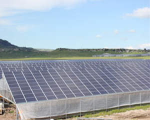 Fotovoltaico su serra : 16 Megawatt in Sardegna