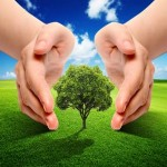 Migliorare l'efficienza energetica: le proposte di Amici della Terra