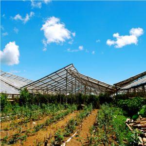 risparmio energetico in agricoltura