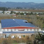 Renewable Energy Report: il fotovoltaico in Italia