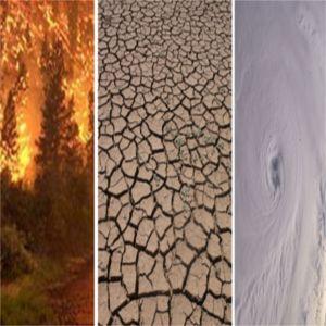 cambiameno climatico effetti