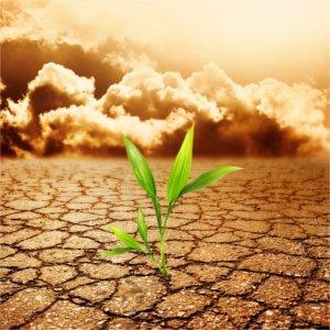 riscaldamento globale e povertà