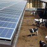 Scaldacqua a pompa di calore e fotovoltaico: ecco quanto si risparmia