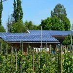 Anie rinnovabili, prosegue il trend positivo del fotovoltaico: +33%
