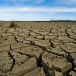 Cambiamenti climatici: i numeri dei profughi del clima
