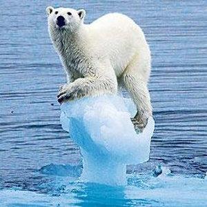 Artico: lo specchio del cambiamento climatico